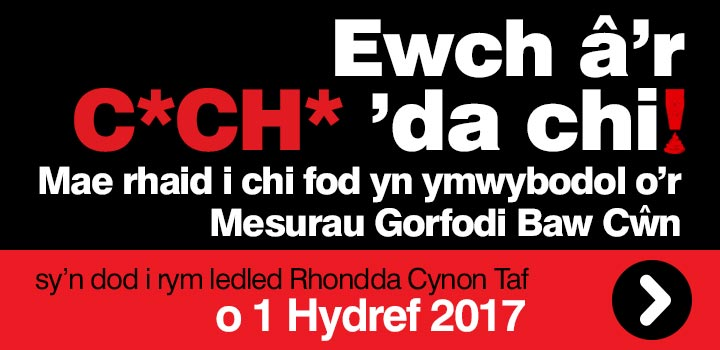 web promo box welsh