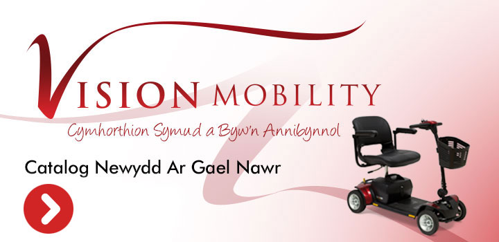 Vision-Mobility-Welsh-web-box