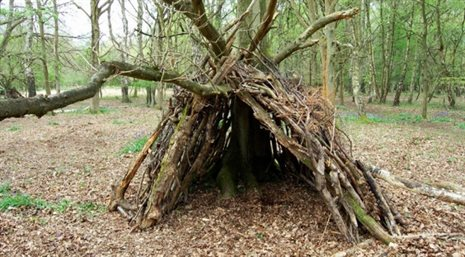 den-building-featured-672x372